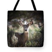 Deer I Tote Bag