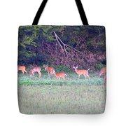 Deer-img-0128-005 Tote Bag
