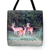 0150-004- Up To 24x17.125 Tote Bag