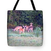 Deer-img-0156-002 Tote Bag