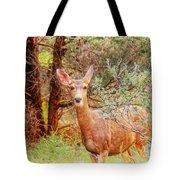 Deer In Forest Tote Bag