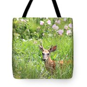 Deer In Magee Marsh Tote Bag