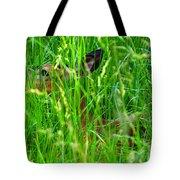 Deer In Tall Grass Tote Bag