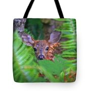 Fawn In The Ferns Tote Bag