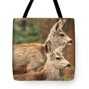 Deer In The Rocky Mountains Tote Bag