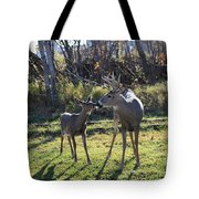 Deer Kiss Tote Bag