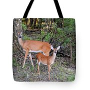 Deer Mom 2 Tote Bag