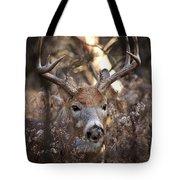 Deer Pictures 449 Tote Bag