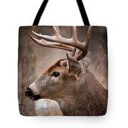 Deer Pictures 491 Tote Bag