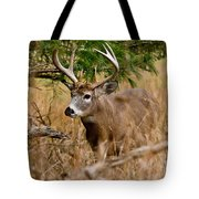 Deer Pictures 525 Tote Bag