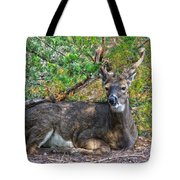 Deer Relaxing Tote Bag