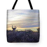 Deer Ridge - Sunset Buck Tote Bag