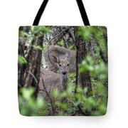 Deer Through The Trees Tote Bag