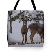 Deer With A Leg Up Tote Bag
