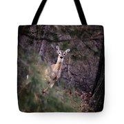 Deer's Stomping Grounds. Tote Bag