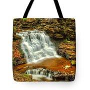 Delaware Falls - Ricketts Glen Tote Bag