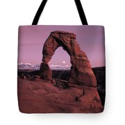 Delicate Arch Tote Bag by Leland D Howard