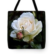A Rose Of Delicate Beauty Tote Bag
