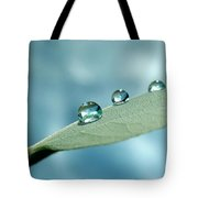 Delicate Drops Tote Bag