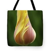 Delicate Folds Of A Tulip Tote Bag