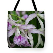 Delicate Orchid Blossoms Tote Bag