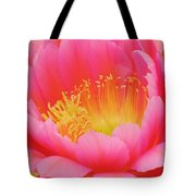 Delicate Pink Cactus Flower Tote Bag