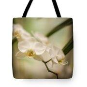 Delicate Romance Lace Tote Bag
