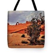 Delicate Strength Tote Bag