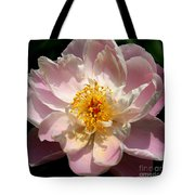 Delicate Touch  Tote Bag