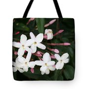 Delicate White Jasmine Blossom With Green Background  Tote Bag