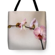 Delicate Pink Phalaenopsis Orchids Tote Bag