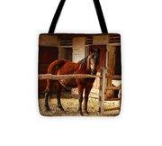 Delightful Horse Tote Bag