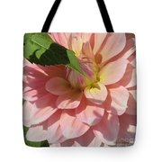 Delightful Smile Dahlia Flower Tote Bag
