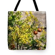 Delphi Pomegranate Tote Bag