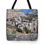 Delphi Stadium Ruins 2 Tote Bag