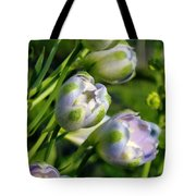 Delphinium Buds Blooming Tote Bag