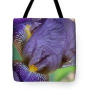 Demure Iris Tote Bag