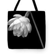 Demure Lotus Tote Bag