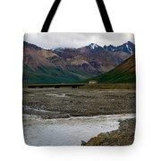 Denali National Park 4 Tote Bag