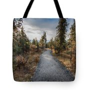 Denali Path Tote Bag