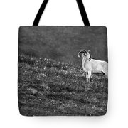Denali's Majestic Wildlife Tote Bag