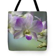 Dendrobium  6398 Tote Bag