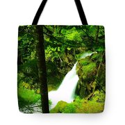 Denny Camp Falls  Tote Bag