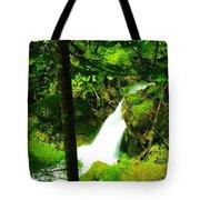 Denny Camp Falls  Tote Bag