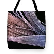 Dental Floss Sem Tote Bag