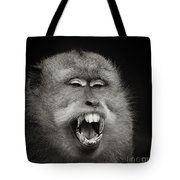 Dentist Time Tote Bag