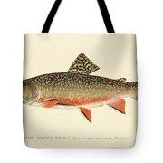 Denton Brook Trout Tote Bag