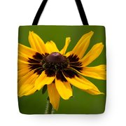 Denver Daisy Tote Bag