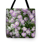 Descanso Gardens 10 Tote Bag