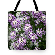 Descanso Gardens 8 Tote Bag